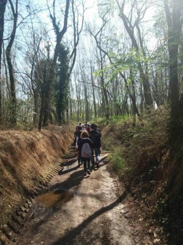 Escursione Sensoriale in Silenzio nel Parco del Ticino - settembre 2017